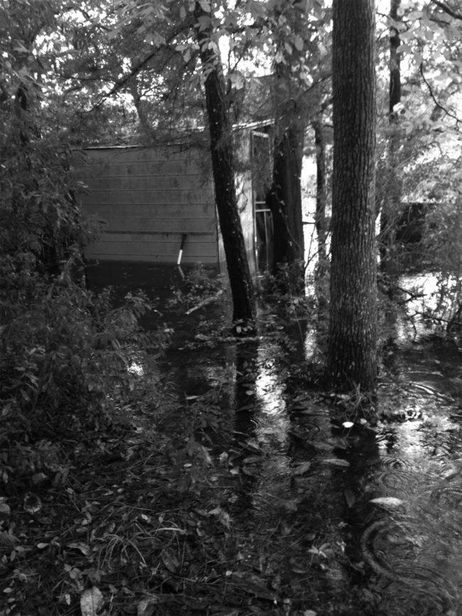 Photo of writing shack © David Gessner