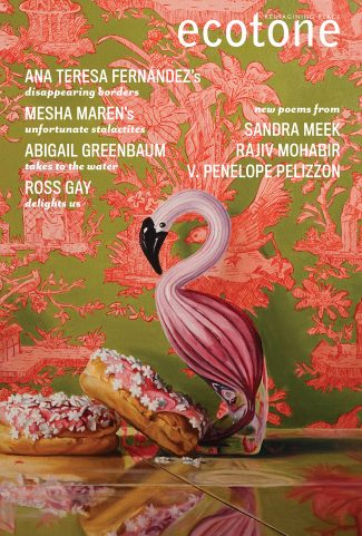 Front cover of Ecotone, featuring a painting of doughnuts and a flamingo figurine against a bright wallpaper background