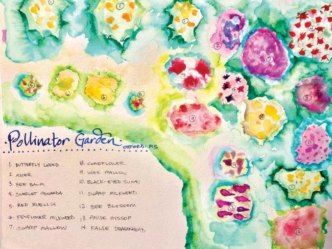 A watercolor pollinator garden map by Aimee Nezhukumatahil, featuring butterfly weed, aster, bee balm, scarlet monarda, red ruellia, fewflower milkweed, swamp mallow, coneflower, wax mallow, black-eyed susan, swamp milkweed, bee blossom, anise hyssop, and false dragonhead.